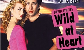 Wild at Heart and Used Cars on Blu-ray