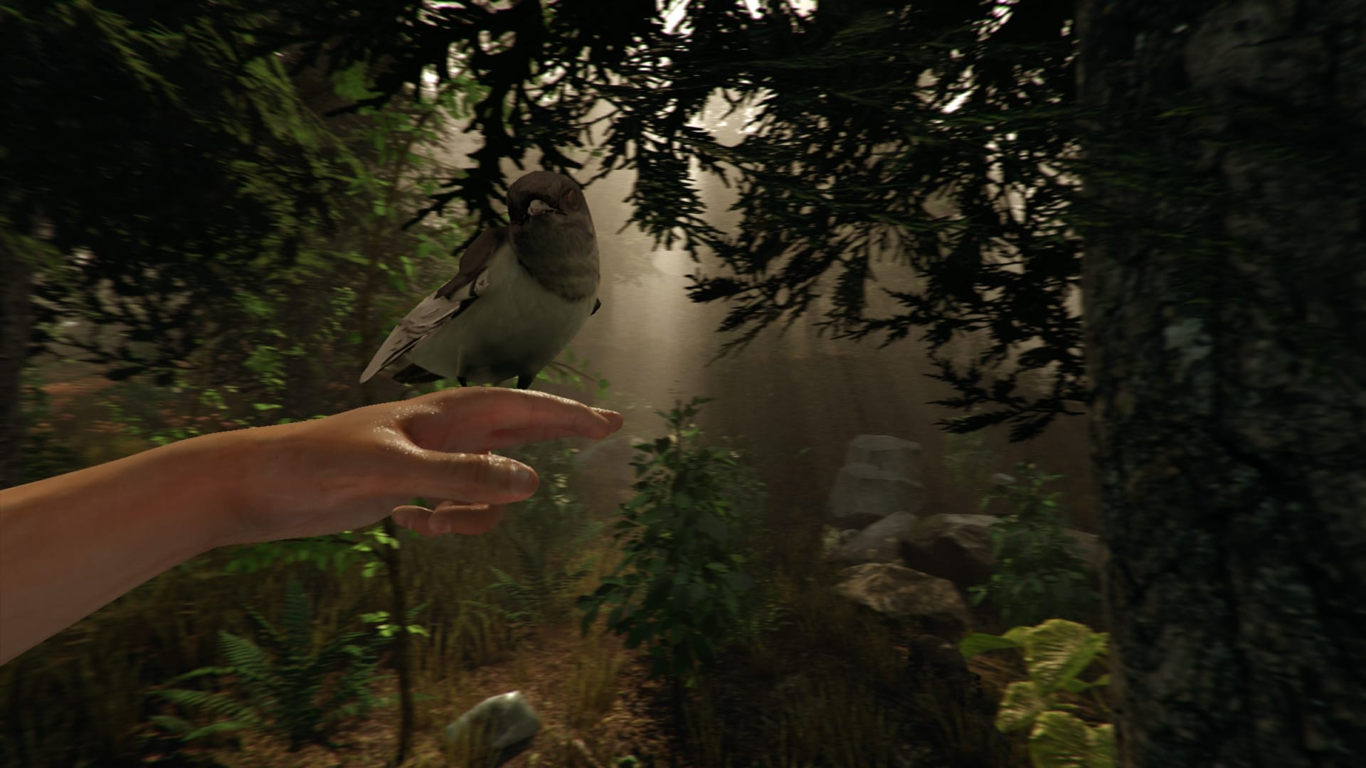 The Forest Game Play Screenshot 7